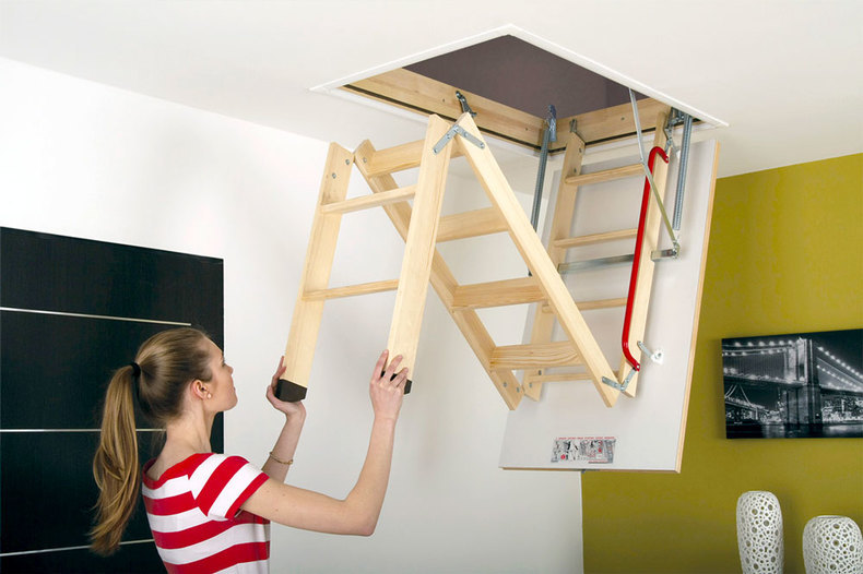 Loft ladder styes
