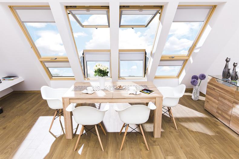 large roof windows natural light