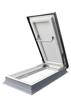 Flat Roof Access